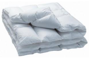 Одеяло пуховое НаСаДен